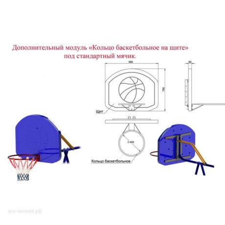 Доп. модуль Баскетбольный щит с кольцом