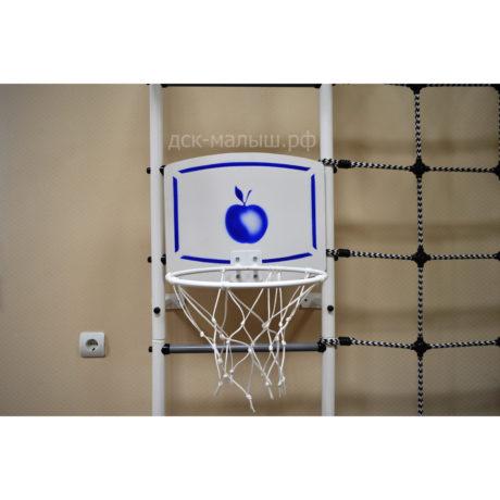 Баскетбольный щит и кольцо